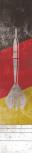 Profi Dartmatte Deutschland 283cm x 60cm  (offizieller Abstand für Steel- und Softdart)